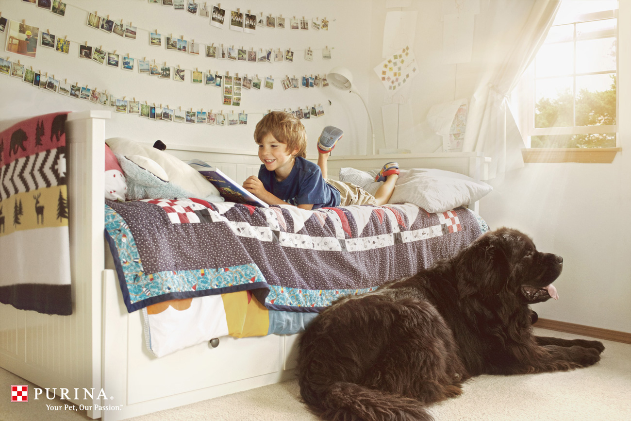 julian-bed-reading-purina-1